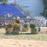 Kantonales Schwingfest AG